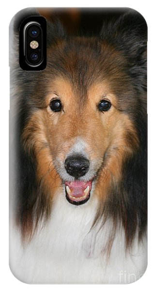 A Dog Named Beau IPhone Case