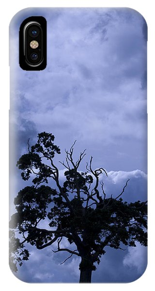 A Flash Of Blue Tree IPhone Case