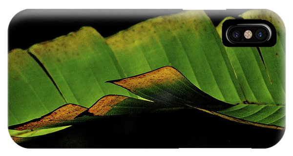 A Floating Heliconia Leaf IPhone Case
