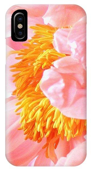 iPhone Case - A Flower Effect by Stephanie Callsen
