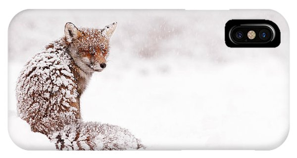 Winter iPhone Case - A Red Fox Fantasy by Roeselien Raimond