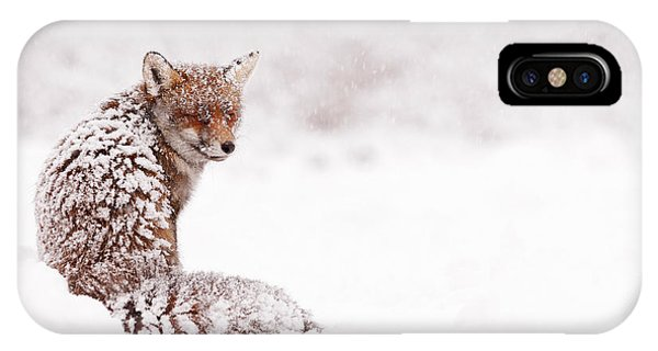 A Red Fox Fantasy IPhone Case