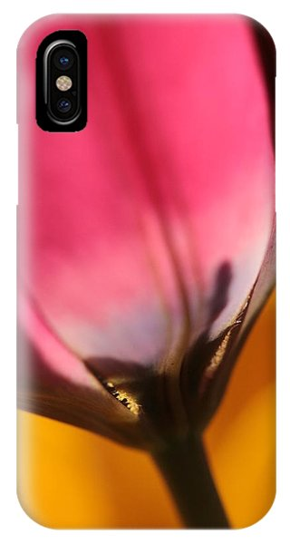 A Glimpse Into Eternity IPhone Case