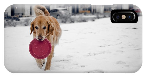 A Golden And His Frisbee IPhone Case