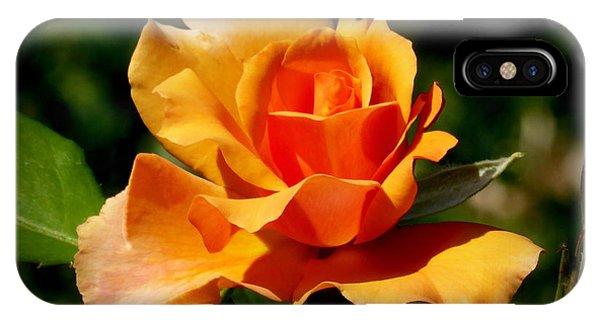 A Golden Rose Phone Case by Bishopston Fine Art