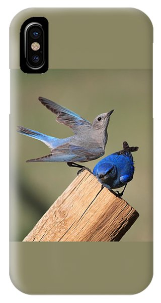 A Great Pair IPhone Case