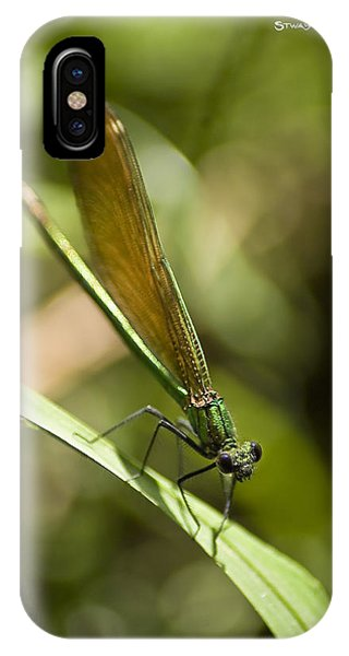 IPhone Case featuring the photograph A Green Dragonfly by Stwayne Keubrick