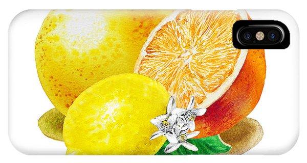Grapefruit iPhone Case - A Happy Citrus Bunch Grapefruit Lemon Orange by Irina Sztukowski