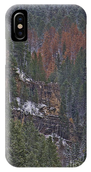 A Hint Of Brown IPhone Case