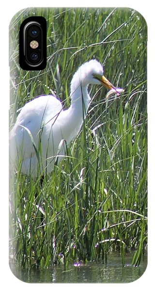 A Hungry Great Egret IPhone Case