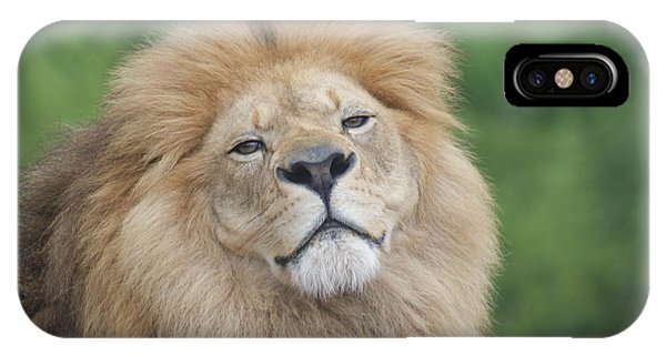 A King's Smile Phone Case by Leigh Ann Hartsfield