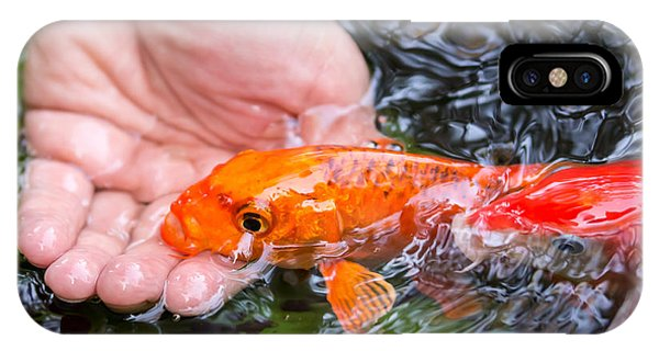 IPhone Case featuring the photograph A Koi In The Hand by Priya Ghose