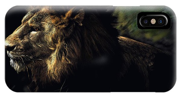A Lion #1 IPhone Case
