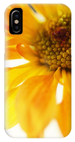 A Little Bit Sun In The Cold Time IPhone Case