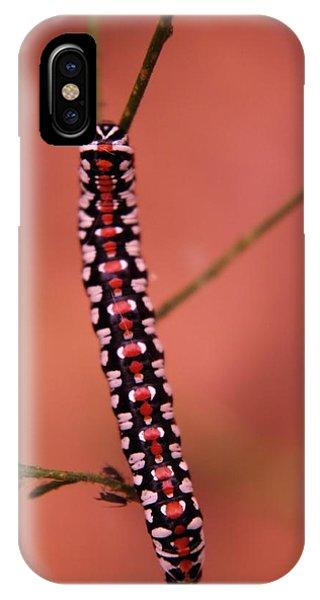 Little Things iPhone Case - A Little Caterpillar by Jeff Swan