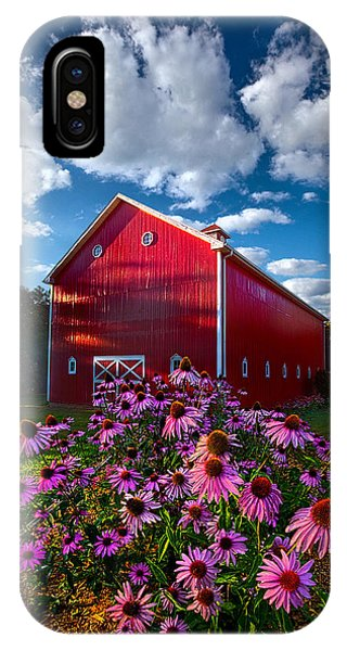 Fall Flowers iPhone Case - A Little More Country by Phil Koch