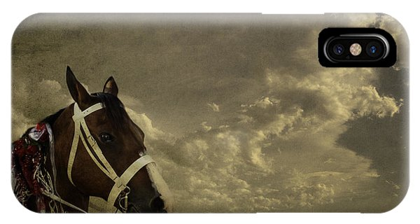 A Lovely Horse IPhone Case