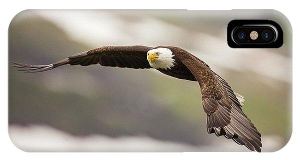 A Mature Bald Eagle In Flight IPhone Case