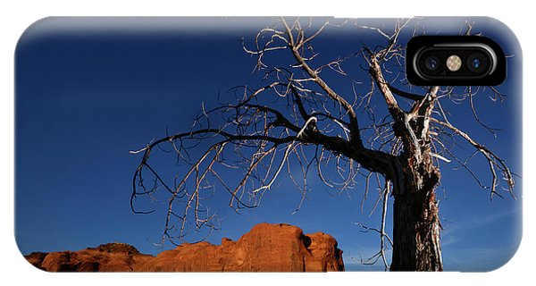 iPhone Case - A Mesquite Trees And Buttes by Raul Touzon