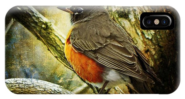 A Moment For Mother Robin IPhone Case