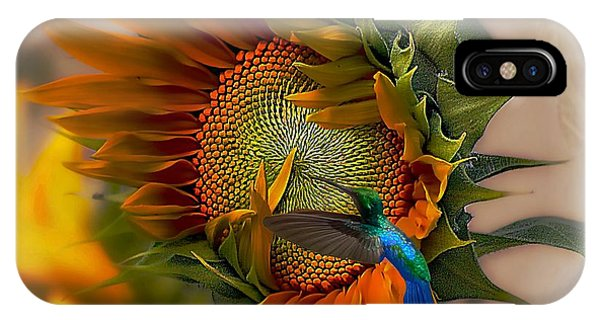 Hummingbirds iPhone Case - A Moment In Time by John  Kolenberg