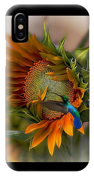 Sunflower iPhone Case - A Moment In Time by John  Kolenberg