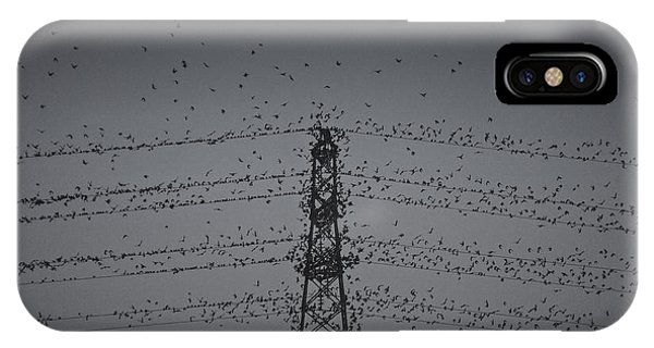 A Murmuration Of Starlings IPhone Case