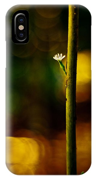A New Beginning IPhone Case