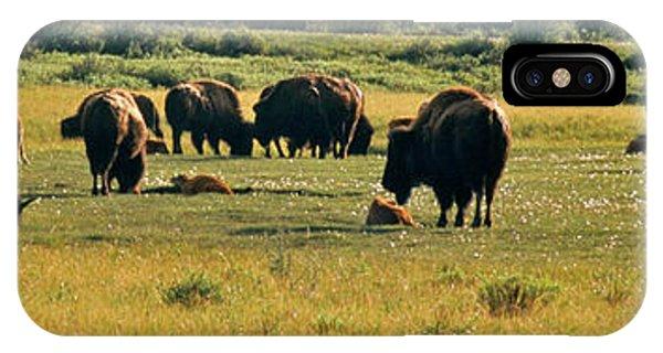 A New Beginning Grand Teton National Park IPhone Case