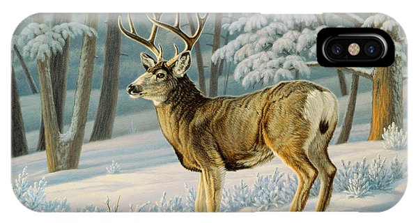 Mule Deer iPhone Case - A Nice Buck by Paul Krapf