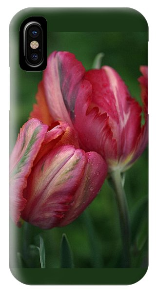 A Pair Of Tulips In The Rain IPhone Case