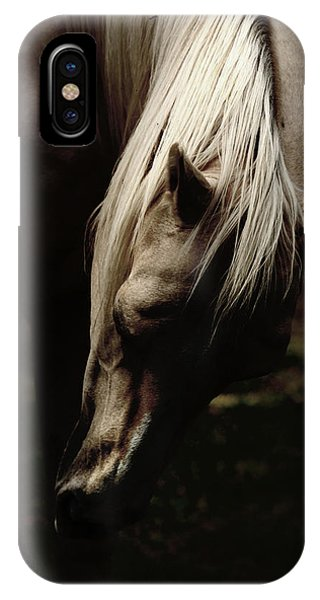 A Pale Horse IPhone Case