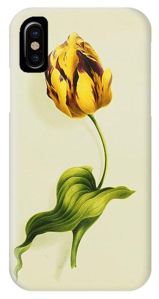 A Parrot Tulip IPhone Case