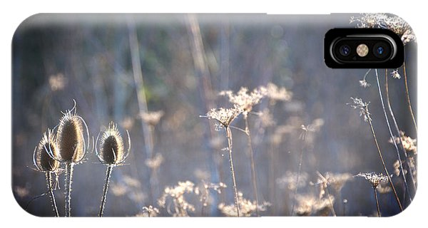 A Patch Of Light IPhone Case
