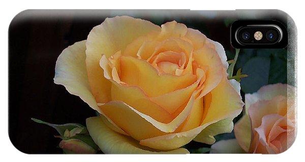 A Peach Of A Rose IPhone Case