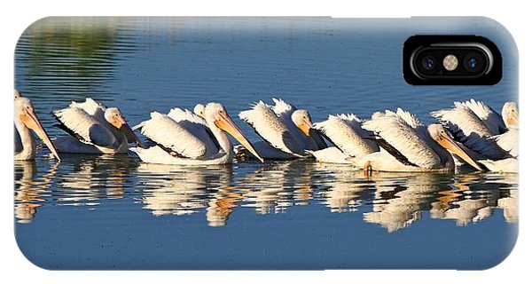 A Raft Of Pelicans IPhone Case
