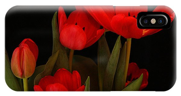 A Red Tulip Day IPhone Case