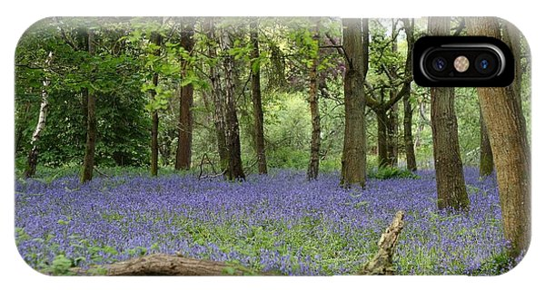 A Sea Of Bluebells IPhone Case