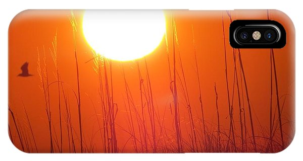 A Seagull's Sunrise IPhone Case
