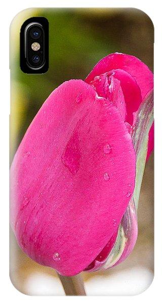 A Simple Tulip IPhone Case