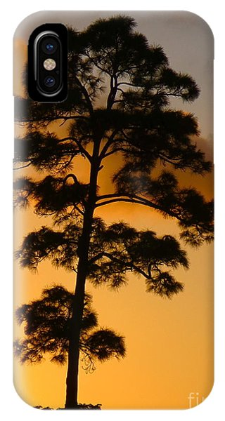 A Single Tree Standing Tall At Sunset. Nature Is So Beautiful. IPhone Case