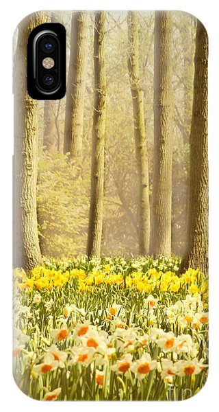A Spring Day IPhone Case