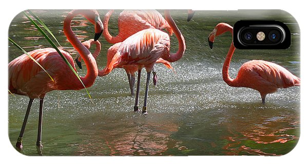 iPhone Case - A Stand Of Flamingos by Anthony Forster