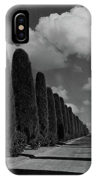 A Street Lined With Cypress Trees IPhone Case