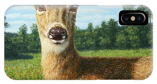 Sunny iPhone Case - A Sunny Doe by James W Johnson