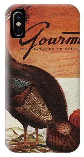 A Thanksgiving Turkey And Pumpkin IPhone Case