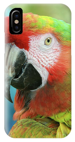 Macaw iPhone Case - A Thing Of Beauty Is A Joy Forever by Sharon Mau