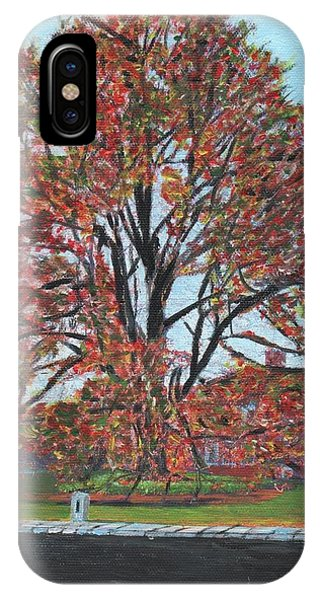 A Tree In Sherborn IPhone Case