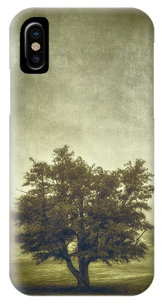 Fog Mist iPhone Case - A Tree In The Fog 2 by Scott Norris
