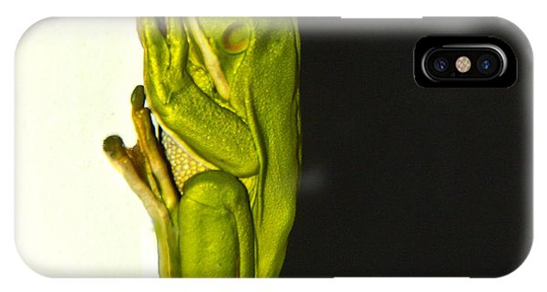 A Visit From A Giant Tree Frog Phone Case by Debbie Cundy